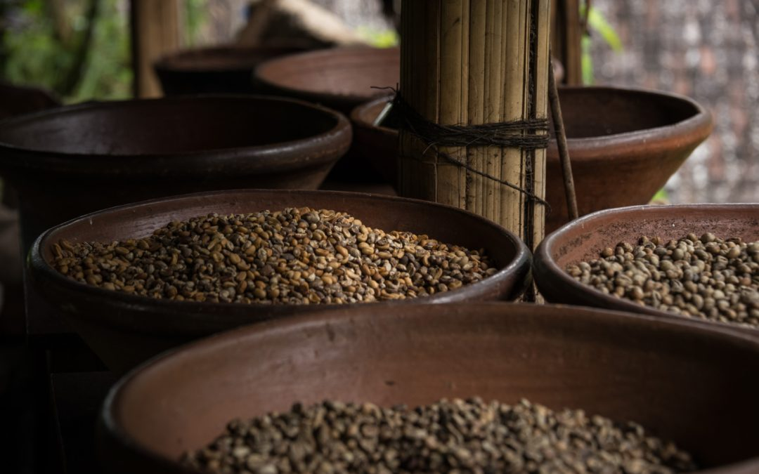 Gesunde Hülsenfrüchte: Die ayurvedische Proteinquelle